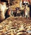 满汉全席108道菜名分别是什么,清朝饮食有什么讲究